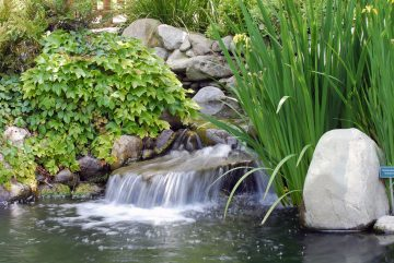 Koi Pond with Aerator System