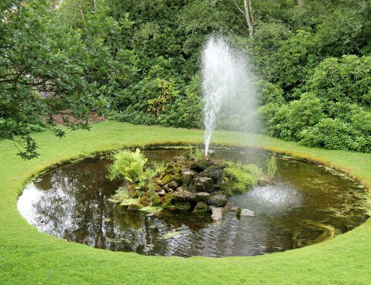 8 benefits of using a solar pond pump