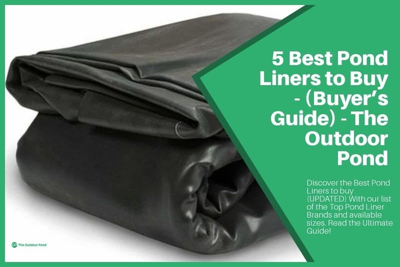 Top 5 Best Pond Liners