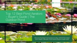 Top Pond Aerators & Air Pumps for Sale