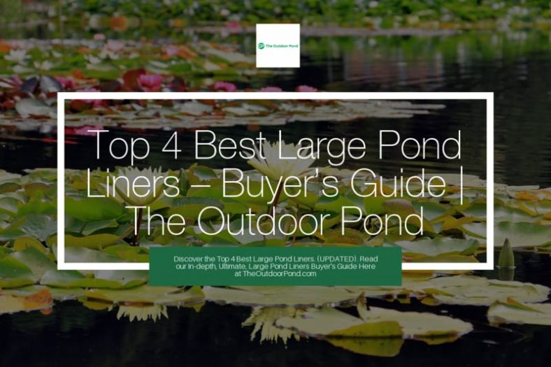 Top 4 Large Pond Liners