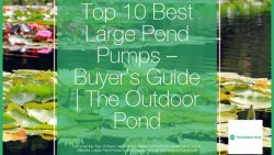 Top 10 Large Pond Pumps