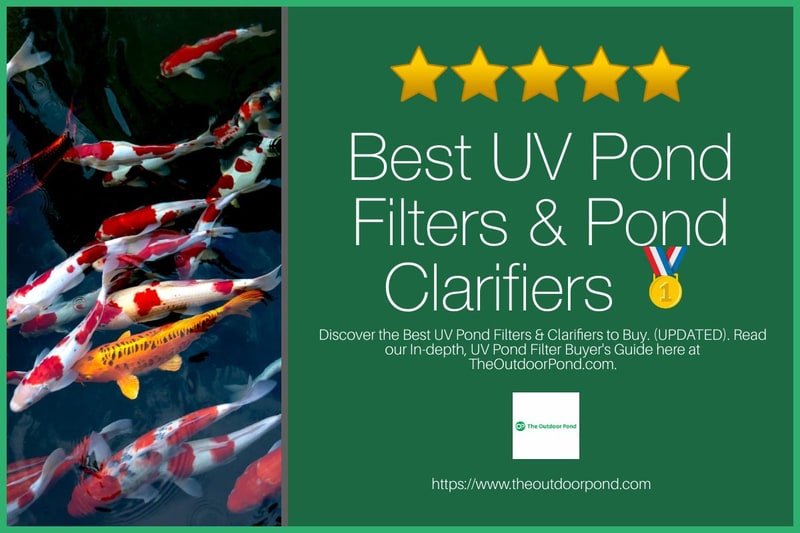 Best UV Pond Filters and Pond Clarifiers