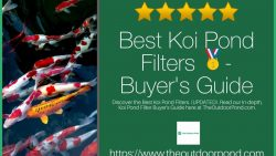 Bes Koi Pond Filters