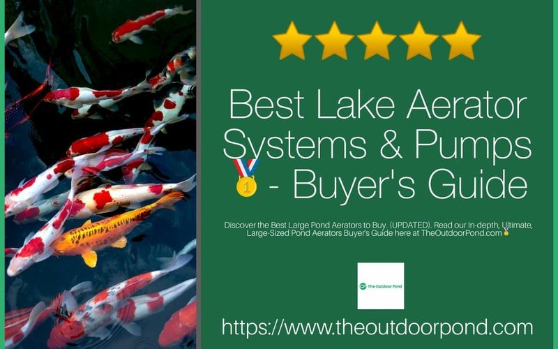 Best Lake Aerator Systems & Pumps